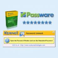 Unhiding Passwords